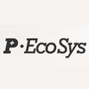 Pecosys חיבור יזמים לאמריקה הלטינית